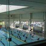 【日記】引き続きプールで健康